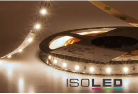 copy of LED strip warm white with 4.8 watts per meter at 24 volt, IP66